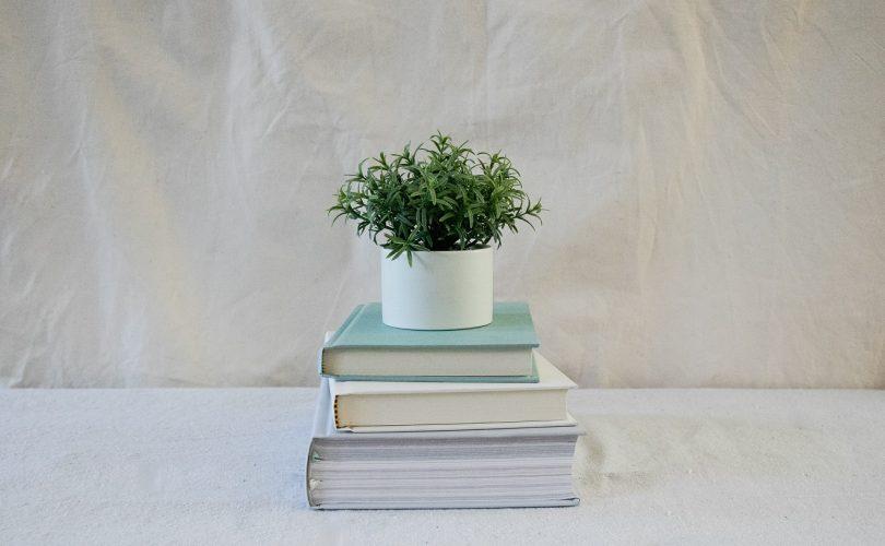 rastlina položená na knihách